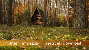 Timelapse-Film Download